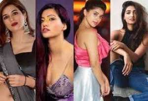 four-young-heroines-in-bigg-boss-4_g2d